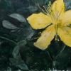 Blüte 9